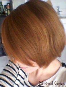 blog_cheveux1